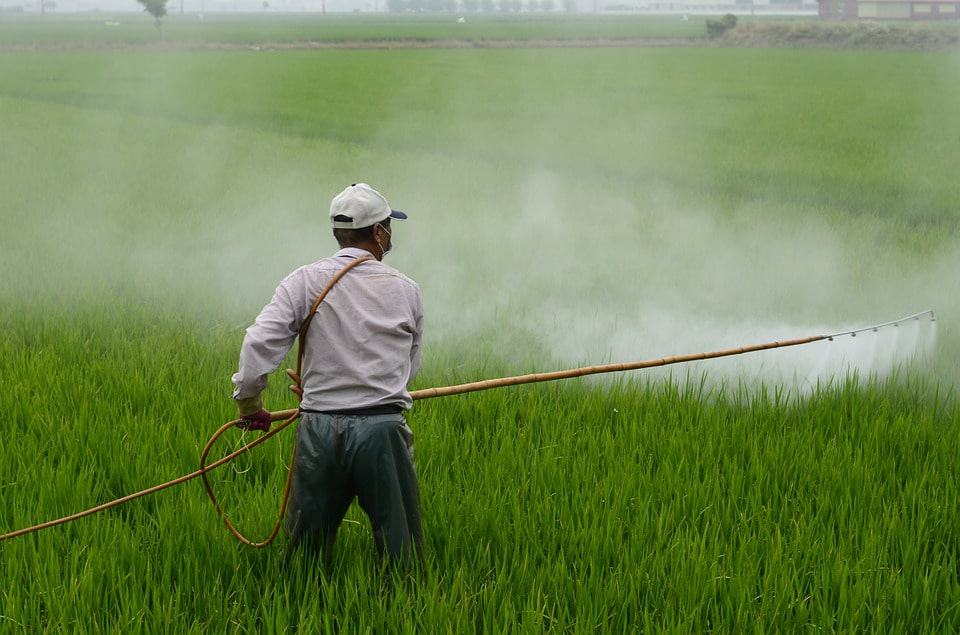 What Is Pesticide