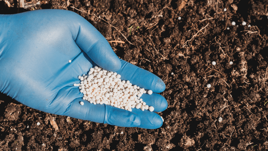 How To Add Nitrogen To Soil