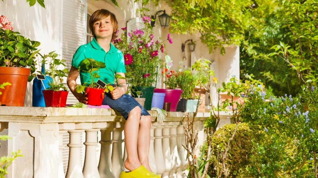 How To Keep The Balcony Garden Clean